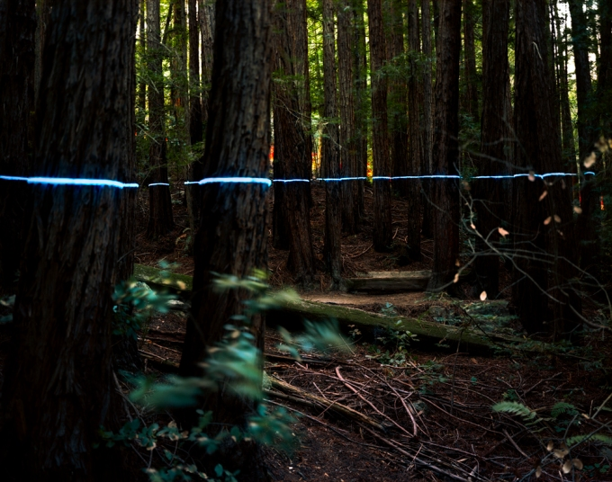 underwood_blueline