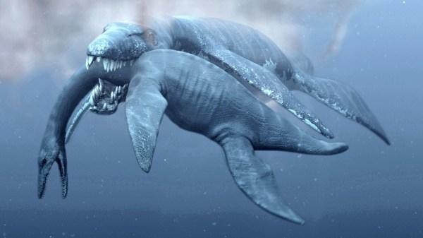 RTEmagicP_PredatorX_Pliosaur_Attaque_txdam32844_d4f9aa11