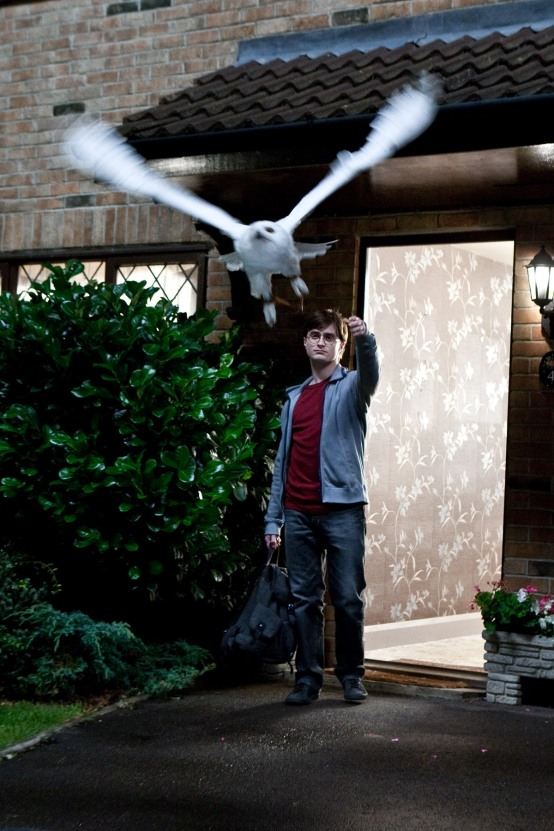 Everyone mounts up and leaves Privet Drive. Harry says goodbye to Hedwig. (SC22)